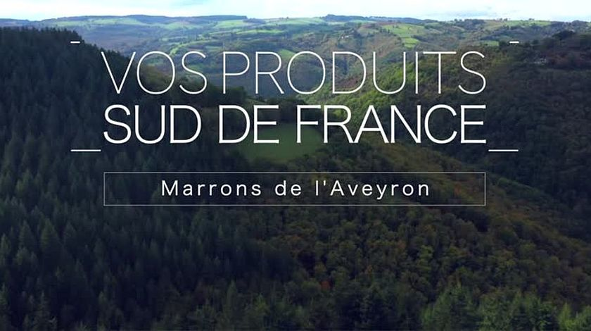 Vos produits Sud de France: Marrons de L'Aveyron (Version ST)